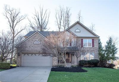 Twinsburg Single Family Home Contingent: 2344 Champion Trl