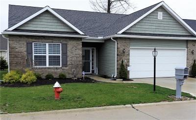 Elyria Single Family Home For Sale: 135 Newport Ct