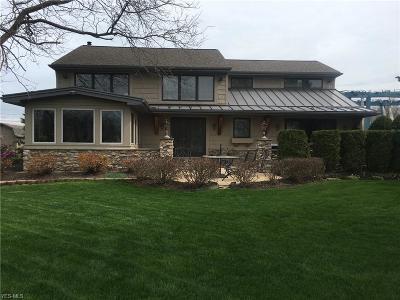 Eastlake Single Family Home For Sale: 224 E Island Drive