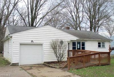 Youngstown Single Family Home For Sale: 3205 Redgate Ln