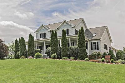 Chagrin Falls Single Family Home For Sale: 11425 Taylor May Rd