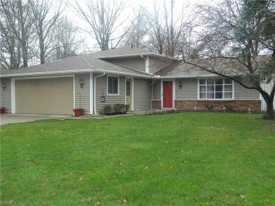 North Ridgeville Single Family Home For Sale: 5440 Birch St