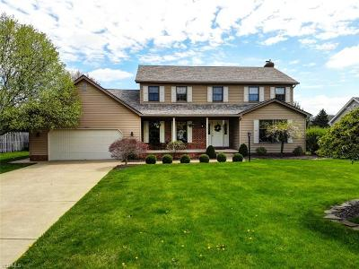 Poland Single Family Home Contingent: 7887 Meadowbrooke Trl