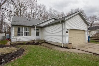 North Ridgeville Single Family Home For Sale: 6241 Eastview Ave