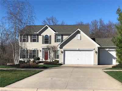 Copley Single Family Home For Sale: 3967 Encell Dr