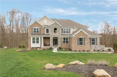 Chagrin Falls Single Family Home For Sale: 7980 McFarland Ridge