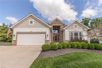Strongsville Single Family Home For Sale: 22000 Olde Creek Trl