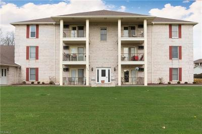 Boardman OH Condo/Townhouse For Sale: $57,900