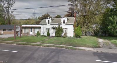 Geneva Single Family Home For Sale: 4795 N Ridge Road