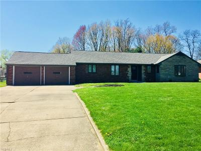 Canfield Single Family Home For Sale: 4482 Green Glen Drive