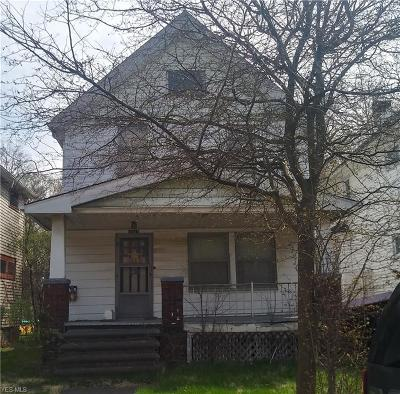 Cleveland Single Family Home For Sale: 3941 West 22nd St