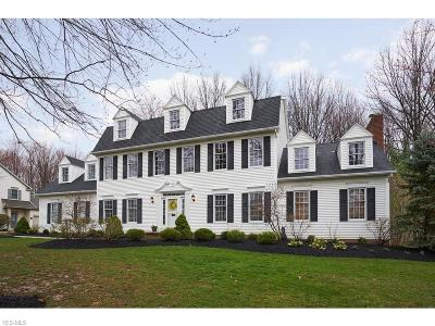 Hudson Single Family Home Active Under Contract: 6573 Westpoint Drive