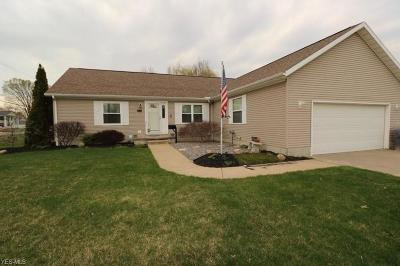 Lorain County Single Family Home For Sale: 2314 Arrowhead St