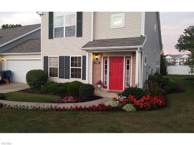 Olmsted Township Single Family Home For Sale: 8609 North Emerald Oval
