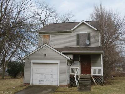 Cleveland Single Family Home For Sale: 9711 Bessemer Ave