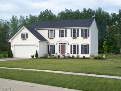 Lorain County Single Family Home For Sale: 5482 Schueller Blvd