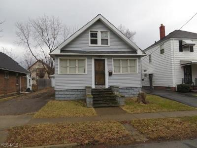 Cleveland Single Family Home For Sale: 3571 East 143rd St