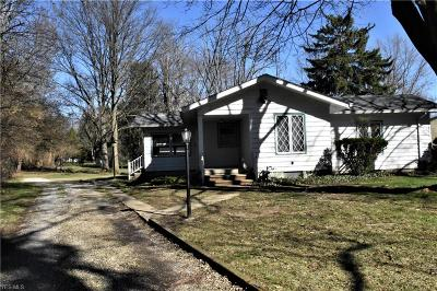 Lorain County Single Family Home For Sale: 9525 East River Rd