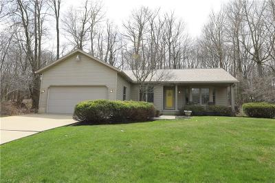 Columbiana County Single Family Home For Sale: 395 Old Coach Ln