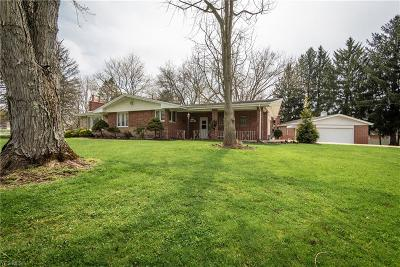 Massillon Single Family Home For Sale: 9250 Clearway St Northwest