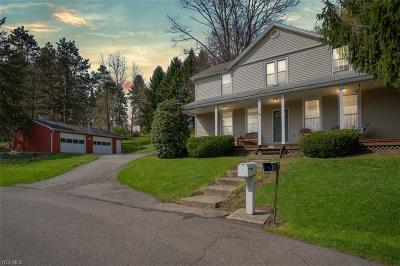 Lisbon Single Family Home For Sale: 10051 State Route 45