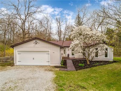 Chippewa Lake Single Family Home For Sale: 7140 Hunter Dr