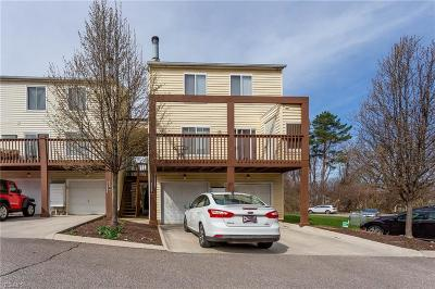 Bay Village, Rocky River, Fairview Park, Westlake, Lakewood Condo/Townhouse For Sale: 22257 River Walk Rd #20