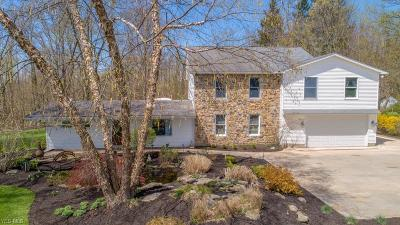 Chagrin Falls Single Family Home For Sale: 17460 Snyder Road