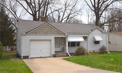 Lorain County Single Family Home For Sale: 135 Vineyard Rd