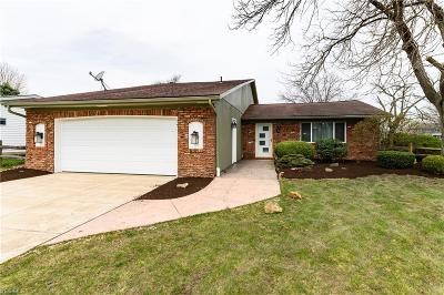 Strongsville Single Family Home For Sale: 16472 South Red Rock Dr