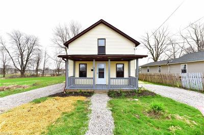 Medina County Single Family Home For Sale: 356 Foundry St