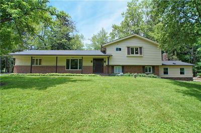 Chagrin Falls Single Family Home For Sale: 18438 Thorpe Road
