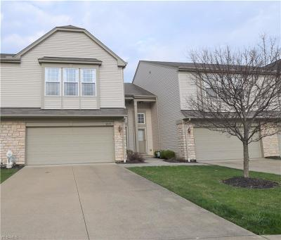 Olmsted Township Single Family Home For Sale: 8573 Dunham Dr
