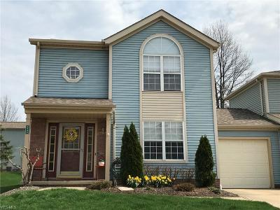 Macedonia Single Family Home For Sale: 8599 Wrenford Ct