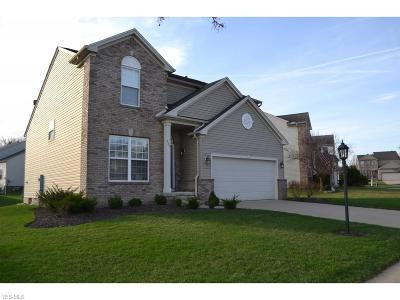 Brecksville, Broadview Heights Single Family Home For Sale: 589 Lenox Ct
