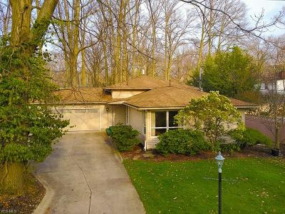 Lorain Single Family Home For Sale: 761 Red Hill Drive