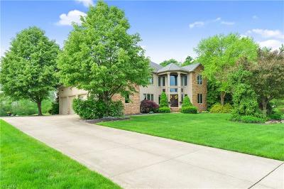Medina Single Family Home For Sale: 6389 Highland Green Dr
