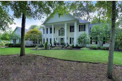 Hudson Single Family Home For Sale: 6325 Paderborne Dr
