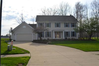 Twinsburg Single Family Home For Sale: 10296 Merriam Ln
