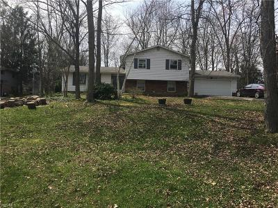 Chagrin Falls Single Family Home For Sale: 3870 Ellendale Road