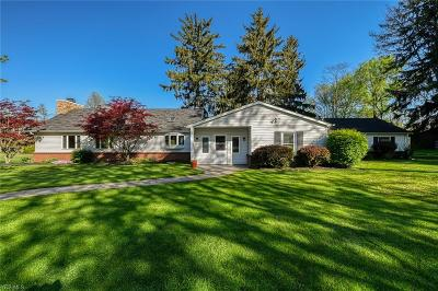 Macedonia Single Family Home For Sale: 9377 Valley View Rd