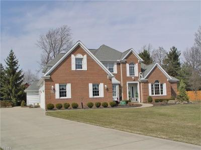 Broadview Heights Single Family Home Contingent: 8392 Windsor Way