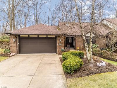 Condo/Townhouse For Sale: 230 Brookview Dr Southwest