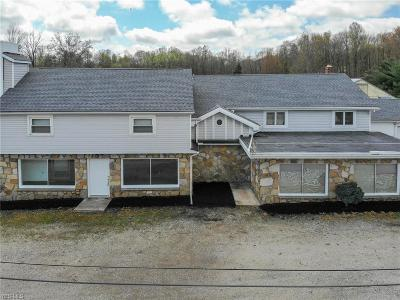 Garrettsville Single Family Home For Sale: 8900 State Route 82