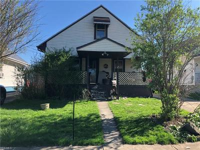 Struthers Single Family Home For Sale: 49 John Street