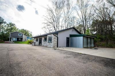 Guernsey County Commercial For Sale: 58901 Marietta Road