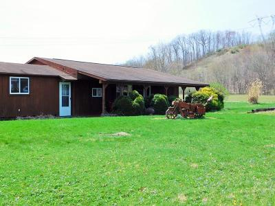 Licking County Single Family Home For Sale: 7363 Mount Vernon Rd