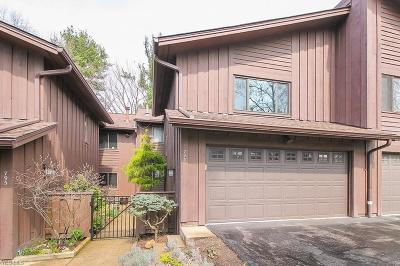 Condo/Townhouse Contingent: 793 Geddes Bluff