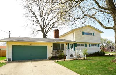 Lorain County Single Family Home For Sale: 1625 West 38th St