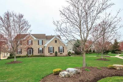 Twinsburg Single Family Home For Sale: 2914 Tucker Ct